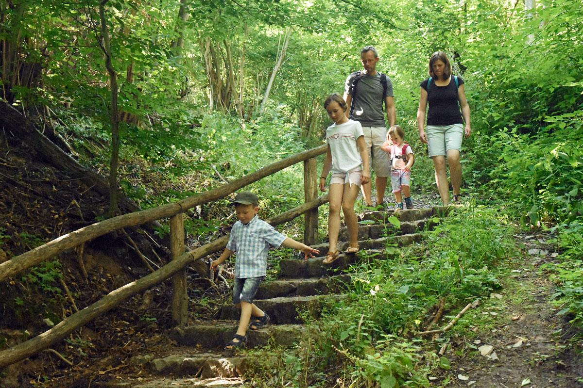 Wandernde Familie geht Treppen im Wald runter