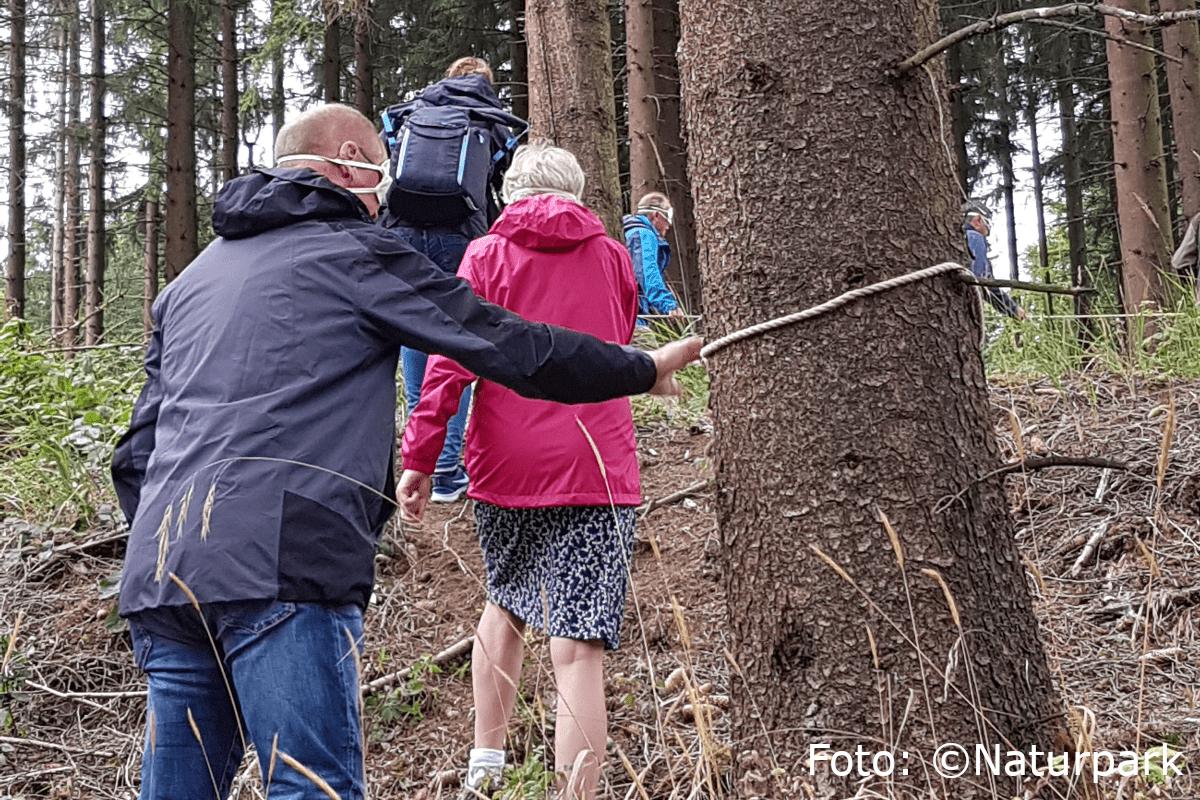 Die angehenden Naturparkführer im Fichtenwald, nah zu den Bäumen..
