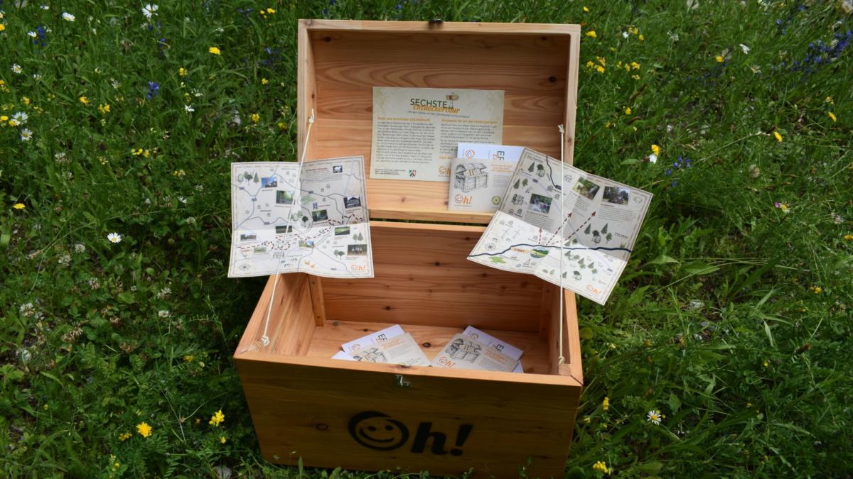 Schatztrue mit Entdeckerkarten des Naturpars auf einer grünen Wiese